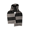 VOLKSWAGEN STRIPED SCARF